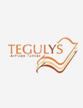 logoTegulys